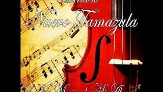 Se Va Muriendo Mi Alma(karaoke)-Mariachi Nuevo Tamazula(version original)