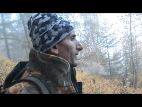Maral Hunting In Central Siberia