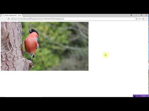 Video Tag In Html  | By Bhanu Priya