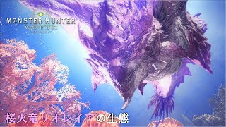 【MHW】桜火竜リオレイア亜種の生態(字幕付き)