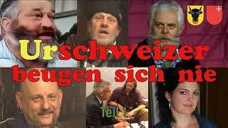 """Unvergessene VIRUS- und IMPFLÜGE """"Blauzungen-Krankheit"""" aus dem Jahre 2008"""
