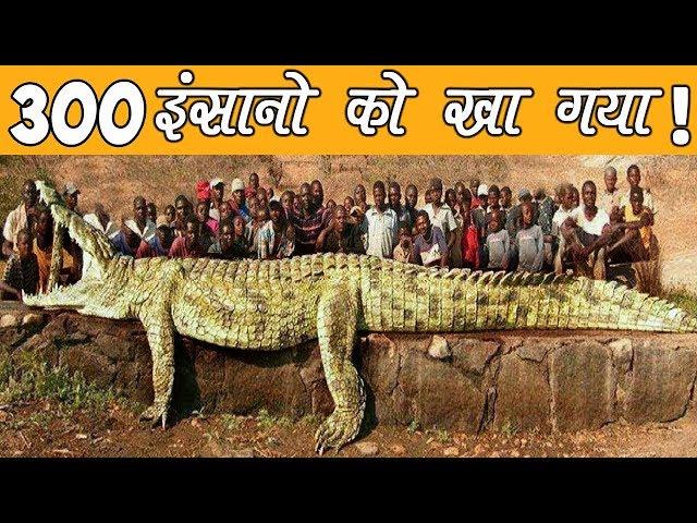 इतिहास का सबसे खतरनाक जानवर || सबसे बड़ा खुलासा || 5 Most Dangerous Animals in History