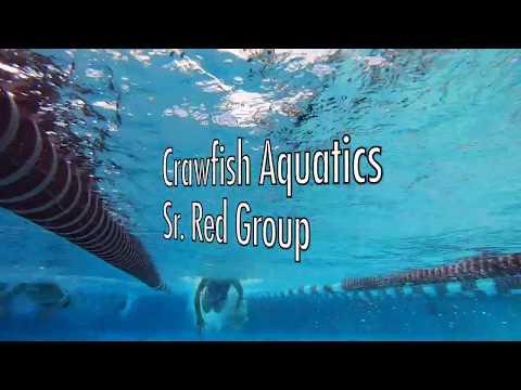 Crawfish Aquatics Sr. Red Group