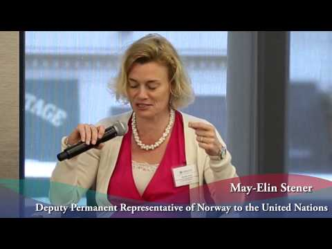 New York Panel Discussion Expectations from Member States of the  UN in a Post 2015 World.