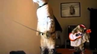 Кот в сапогах прикол))).mp4
