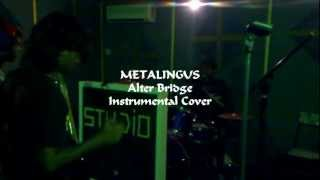 METALINGUS Instrumental Cover by AntiPHobiA