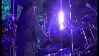Wild and Free - Ziggy Marley | Live at Rototom in Benicassim, Spain (2011)