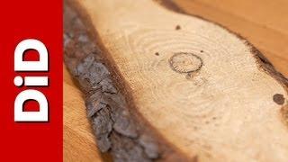 148. Kompendium wiedzy o drewnie: sosna