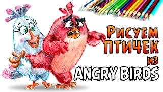 КАК НАРИСОВАТЬ ПТИЧЕК ИЗ Angry Birds. How to draw Angry Birds(КАК НАРИСОВАТЬ ПТИЧЕК ИЗ Angry Birds. How to draw Angry Birds Рисую поэтапно цветными карандашами персонажей из