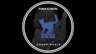 Funkatron - House Muzik (Original Mix)