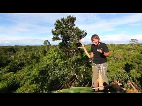 Племя караваи видео как размножаются
