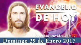 Evangelio de Hoy So 2,3;3,12-13  /  1Co 1,26-31 / Mt 5,1-12a