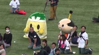 ご当地キャラ交流戦 東西対決!京セラドーム大阪 で行われたご当地キャラのイベントの様子です、大玉ころがし、玉入れ、綱引きで東西対決しま...