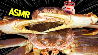 ASMR MUKBANG Giant Snow Crab 대…