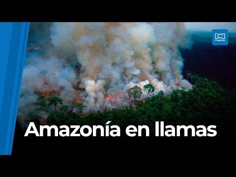 La Gitana - Se nos está muriendo el Planeta...