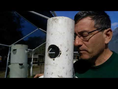 Further adventures with the Culhane Solar Cities airlift aeroponics system at Rosebud Continuum