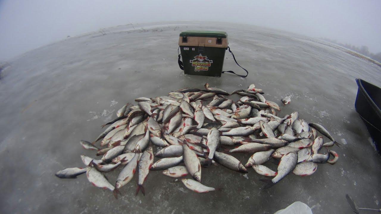 Зимния рыбалка на озере чудское