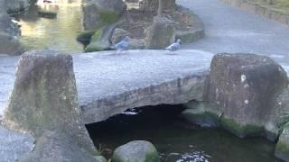 mizu水WATER見沼代親水公園3 thumbnail