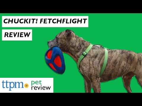 Chuckit! Fetch Flight from Petmate