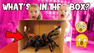 WHAT'S IN THE BOX CHALLENGE!! ♥DeZoeteZusjes♥