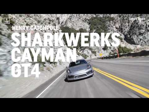 Sharkwerks - Aasco Motorsports 2017-02-02 22:26