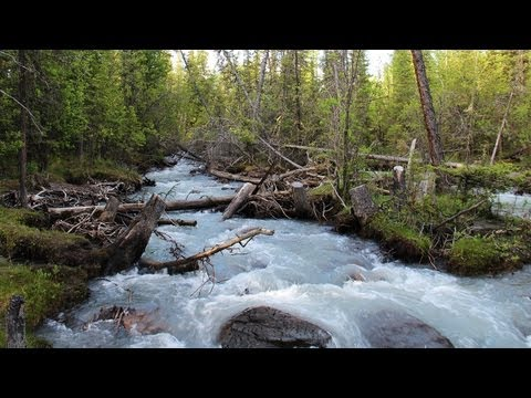 Deep Meditation Music. Flowing Sound Of Nature With Music. Mountain River Sing For Sleep.