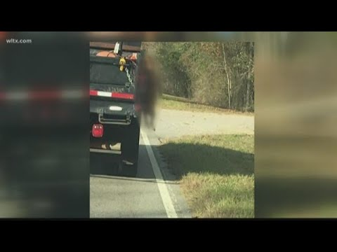 Dead dog hung on side of SCDOT truck