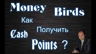new birds - заработок в интернете отзыв. Обзор