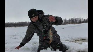 К ПОДПИСЧИКУ НА ЛЕСНОЙ ПРУД ЗА ОКУНЕМ Рыбалка не первый лед балансир безмотылка Алтай