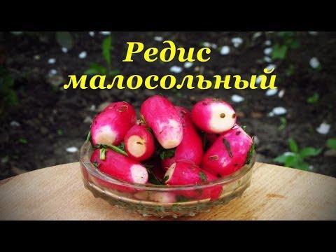 Словарь воровского жаргона Крылатые выражения