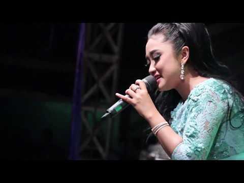 Seroja   Anisa Rahma New Pallapa live Banggi Rembang