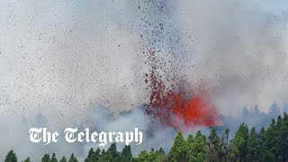 video: Cumbre Vieja volcano erupts on Spain's Canary Islands