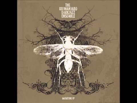 The Kilimanjaro Darkjazz Ensemble - Horns Of King David mp3