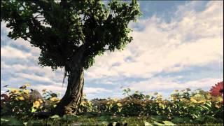 UDK Garden Animation