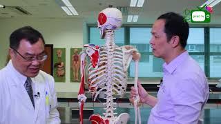 【心視台】香港浸會大學中醫教學院 涂豐博士-都市人最多痛症的地方在哪裏?