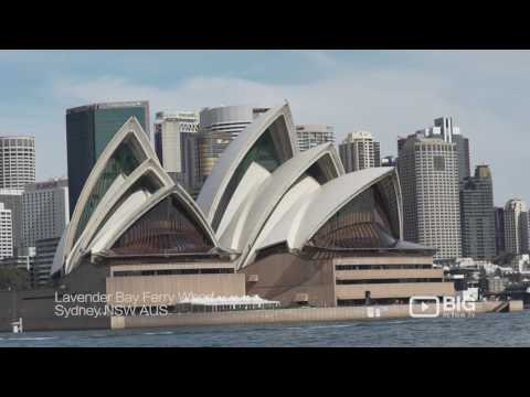 Sail Away Sydney a Tour Operator offering Yacht or Boat Cruise