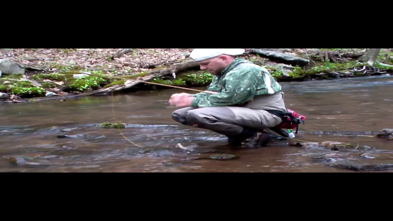 Wild trout fishing in pennsylvania brookies and browns for Trout fishing pa