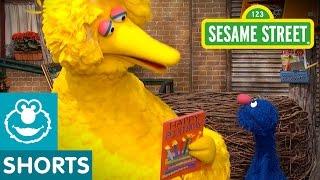 sesame street celebrate big bird s birthday   give the gift of education