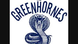 Greenhornes (hidden song) - Lost Woman