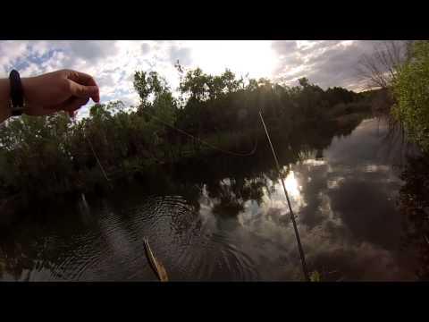 ловля щуки на пруду в апреле видео