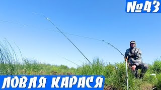Рыбалка на Донки летом - ПРОБКА, Фидер. Ловля карася на ПЕНОПЛАСТ!