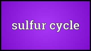 Sulfur cycle Meaning