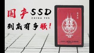 【败家评测】传说的国产SSD来啦!结果令我大吃一斤!