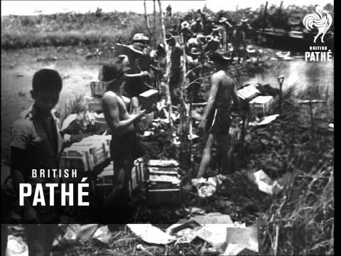 Indochina War - Disposal Of A Viet Dam (1952)