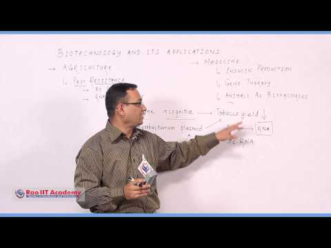 Biotechnology and its applications Part 1 - NEET AIPMT AIIMS Botany Video Lecture