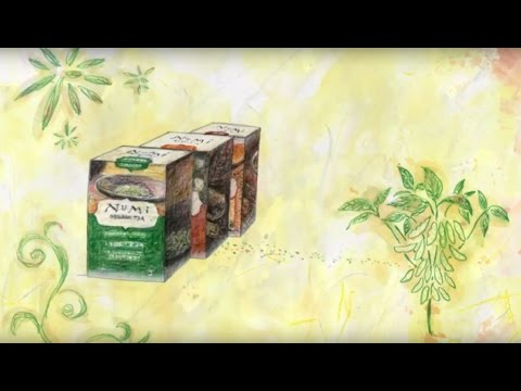 The Story of Numi Organic Tea