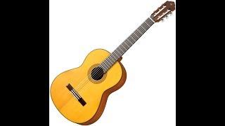 Гитара с нуля - урок 1. С чего начать обучение?