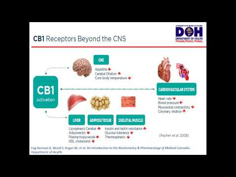 Medical Marijuana (THC and CBD) Pharmacology, Regulation, and Pharmacy Considerations