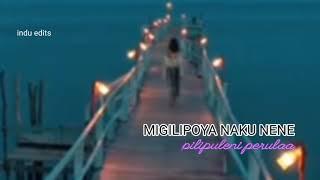 migilipoya naku nene song (status)  indu edits