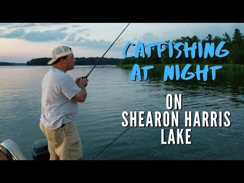 Shearon Harris Catfishing: Fishing For Catfish At Night On Shearon Harris Lake (Episode 6 - 2019)